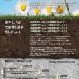 2011年 春の語学留学キャンペーン